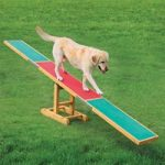Trixie Dog Activity Agility Seesaw – 300 x 34 x 54 cm (L x W x H)